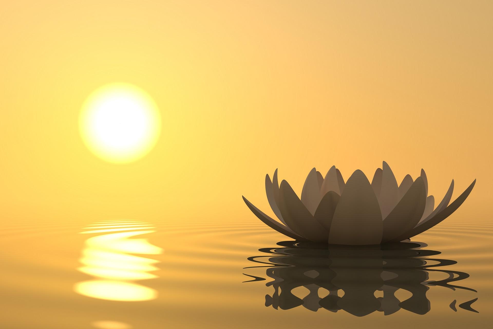 медитация новичкам, как правильно медитировать дома, обучение медитации, гармонизация чакр, как научиться медитации, управление внутренним состоянием, медитативное состояние, духовно-нравственные аспекты