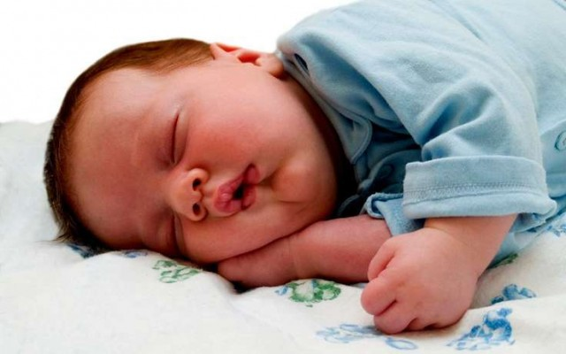 kuda -spat-golovoi2