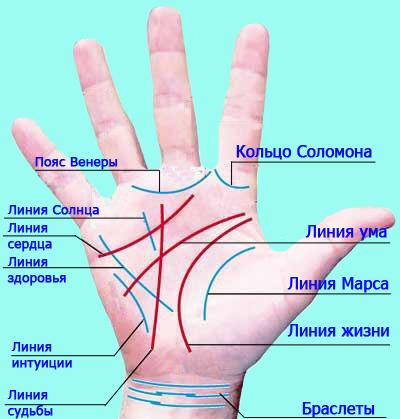 khiromantiya-linii-na-ladoni-linii-sudbi2