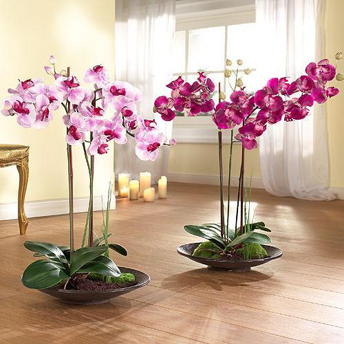 Субстрат-для-орхидей1
