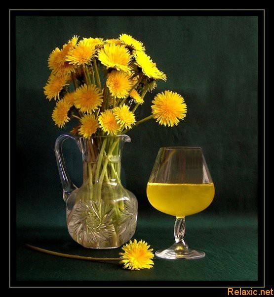 Вино из одуванчиков. Секреты домашнего виноделия.