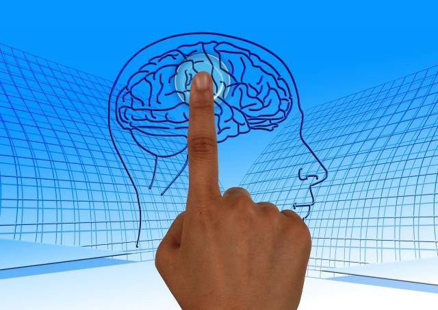 возможности головного мозга человека, скрытые возможности человеческого мозга, тайны человеческого мозга, использование возможностей мозга, развитиеи использование скрытых возможностей мозга