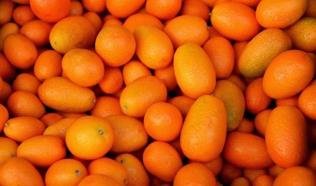 Кумкват, кумкват что это за фрукт, полезные свойства сушеного, вяленого и свежего кумквата, кумкват польза, кумкват вред